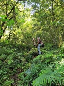 Walking Wild - Samango Safari